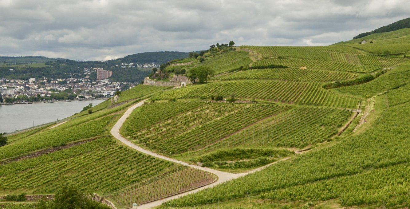 Germany – Day Trip to Rüdesheim am Rhine